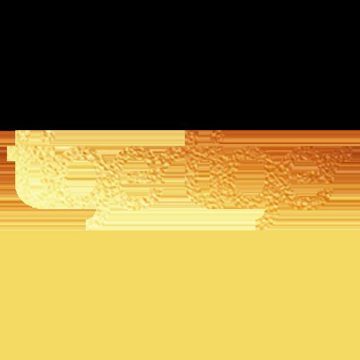 Tiger Tiger logo